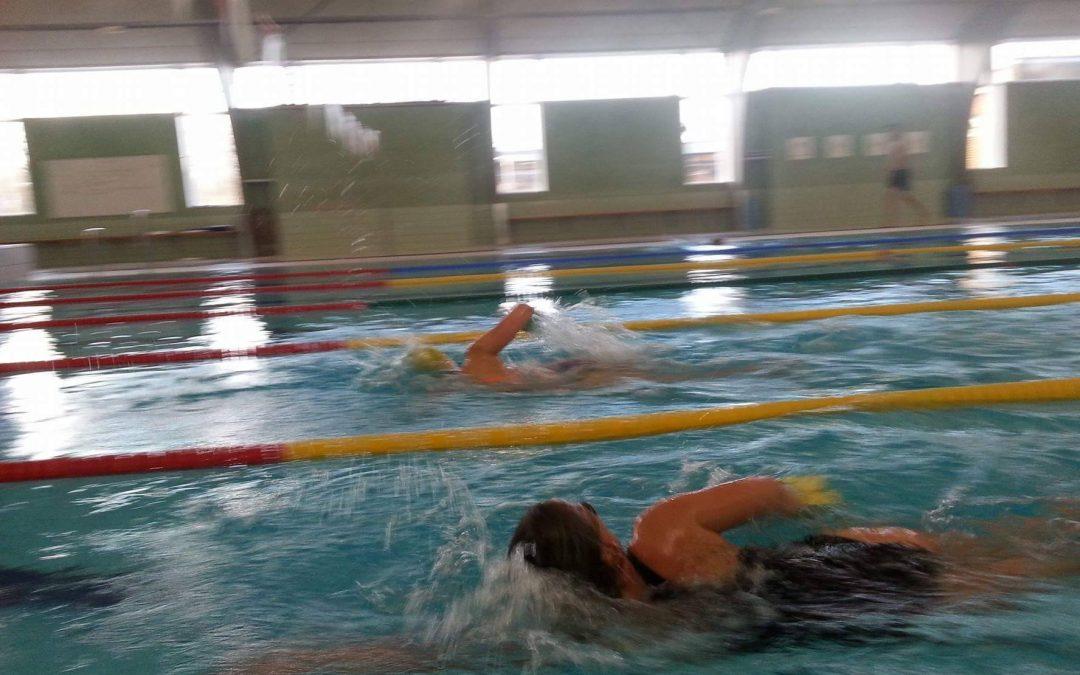 Tilmeld dig den nye svømmesæson